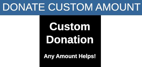 custom amount donation banner